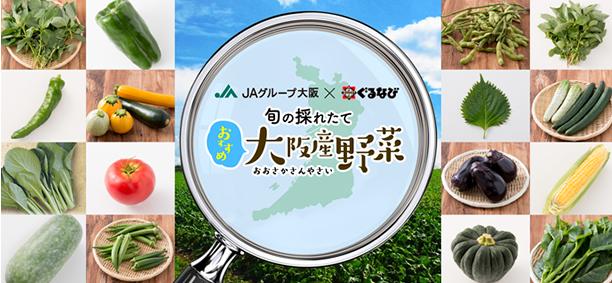 旬の採れたて おすすめ大阪産野菜